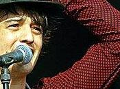 Pourquoi n'irai écouter Pete Doherty demain soir...