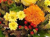 Interflora, bouquets d'automne