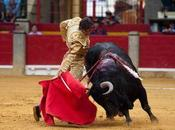 Saragosse oreille pour castella