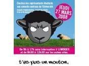 Limoges cacophonie élections universitaires continue…