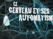 Cerveau Automatismes