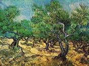 Gogh,Oliveraie(en moment Pinacothèque)