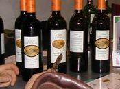 Wine Session vins Rive Droite Baravin (fin)