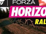 Forza Horizon Détails Rallye