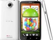 Disponibilité mise jour Android 4.1.1 Jelly Bean pour