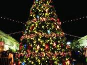 Enfin moment sapin Noël