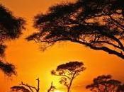 Justice climatique milliards pour l'Afrique