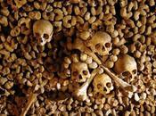 Carnavalet aime champignons catacombes