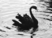 Mobile paiement black swan predictions 2013