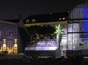 Visite thématique jardin plantes Nantes l'arbre voyageur