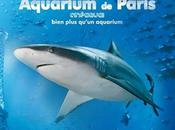 Observer poissons requins Cineaqua Paris réduction dispo Groupon
