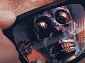 They live