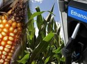 L'éthanol est-il produit éthique