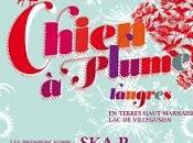 Festival Chien Plumes premiers artistes annoncés
