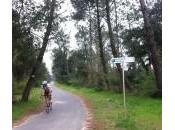 Piste cyclable Ondres plage Labenne (40)