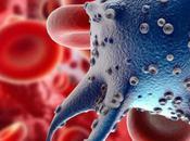 """""""superbactérie"""" sexuellement transmissible plus dangereuse SIDA"""