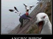 Rovio Accounts Synchronisez parties d'Angry Birds ligne
