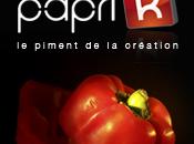 Papri-k l'agence angevine livre créations dans toute France…