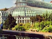Avoir l'esprit vert Jardin Botanique Brooklyn