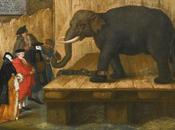 L'éléphant Saint Antoine