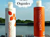 Coup coeur capillaire Acure Organics