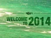 Naisk Kiteboarding Kite 2014