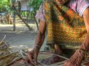 Cambodge minorités ethniques éléphants