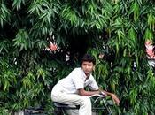 Calcutta express Benjamin Genissel dans cadre Rencontres photos 10ème