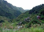 Areva réaliser centrale biomasse Philippines