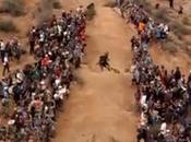 Découvrez Best Bull Rampage 2013