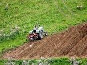 dossier terres agricoles exploitées sera ouvert (ministre)