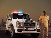 chevaux pour voitures Police Dubai!