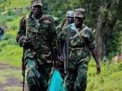 Débandade sein M23: officier supérieur rejoint FARDC
