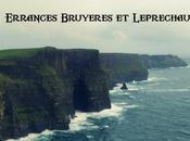 Ireland Road Trip Errances, bruyères Leprechauns