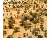 financement criminalité terrorisme Sahel