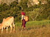 Jusqu'au fond campagnes montagnes, même espoir Aung Kyi, notre envoyé spécial Alan