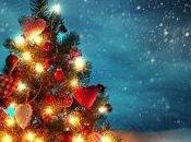 beau sapin Noël naturel