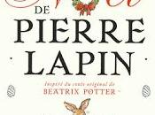 L'aventure Noël Pierre Lapin