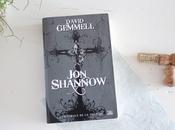 Shannow, David Gemmell. justicier pour paix dans monde dévasté. (avec théories écolo dedans)