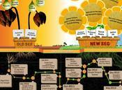 Infographie 2014, bien jolie plante entretenir