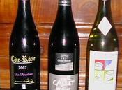Dégustation vins Côte Rôtie millésimes 2006 2007 l'aveugle