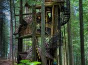 magnifiques cabanes travers monde