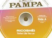 2013 année assez impressionnante terme sorties pour Pampa Records Koze....