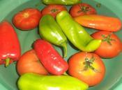 Ratatouille poivrons tomates l'ail