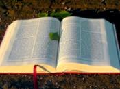 Sauvé bible