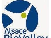 sociétés Transgene (FR) England BioLabs (USA) décrochent financements pour développer conjointement projet innovant dans santé