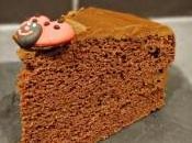 Gâteau chocolat sans gluten lait