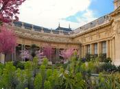 terrasses jardins musées
