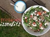 Salade printanière pissenlits blanche vinaigrette