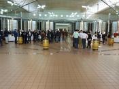 Primeurs 2013 appellation Sauternes Barsac